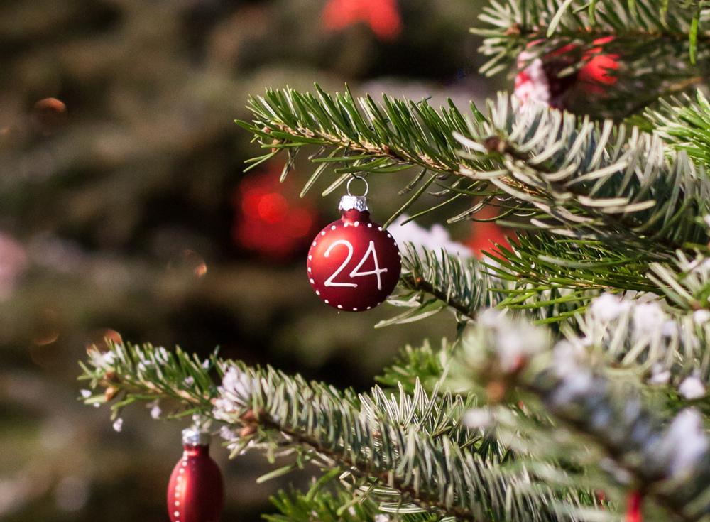 Pranzo-Natale-2019-Ristorante-Il-Civel-Novara-Casalbeltrame